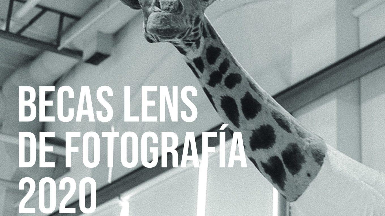 Becas de Fotografía y Cine