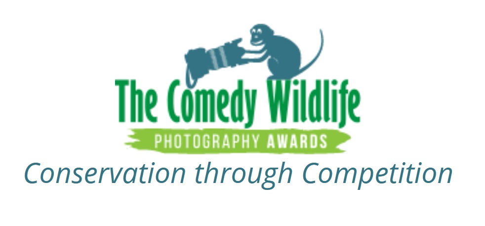 Comedy Wildlife Photographer of the Year