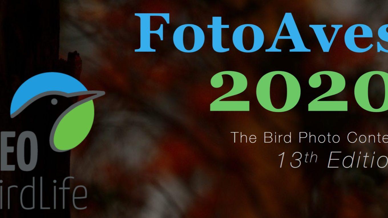 Concurso FotoAves