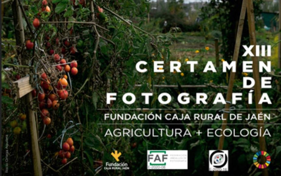 Certamen de Fotografía Fundación CAJA RURAL DE JAÉ