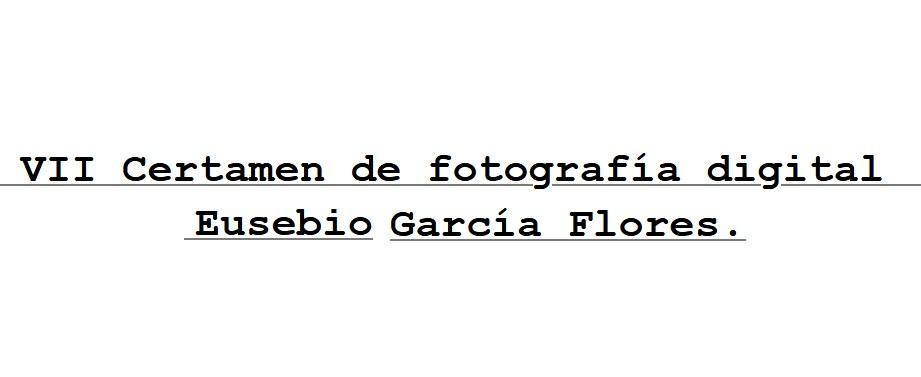 Eusebio García Flores
