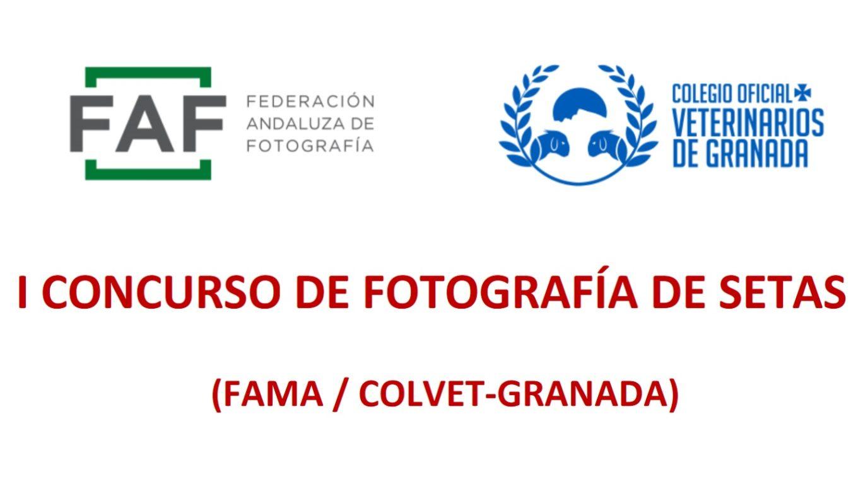 CONCURSO DE FOTOGRAFÍA DE SETAS